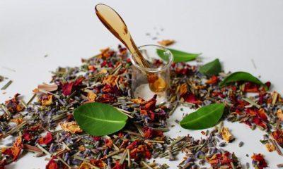Homeopati nedir? Homeopati hastalıkların tedavisinde etkili bir…