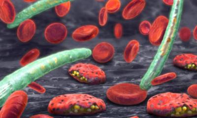 Korona virüsünden korunmanın yolları nelerdir?
