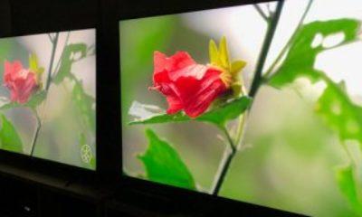 Samsung, gelecek yıl LCD ekran üretimini durduracak
