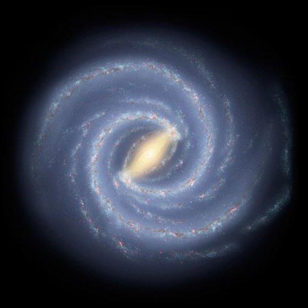 Galaksimizde 30'dan fazla zeki yaratık türü olabilir
