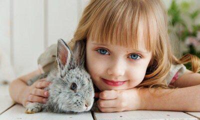 Hayvanlara kötü davranan çocuklara karşı ne yapılmalı? (Çocuklara…