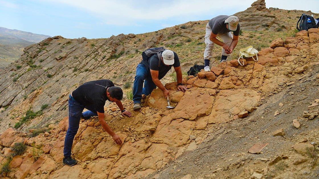 Iğdır'daki fosillerle ilgili bilimsel çalışma başlatıldı