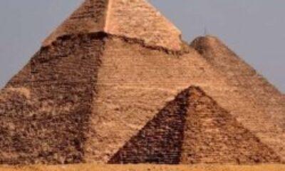 Mısırlı bakan, Elon Musk'ı piramitlere davet etti