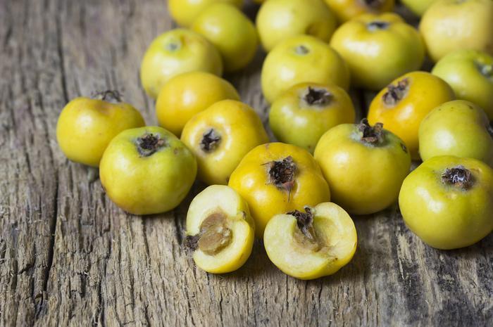 Aluç meyvesinin faydaları