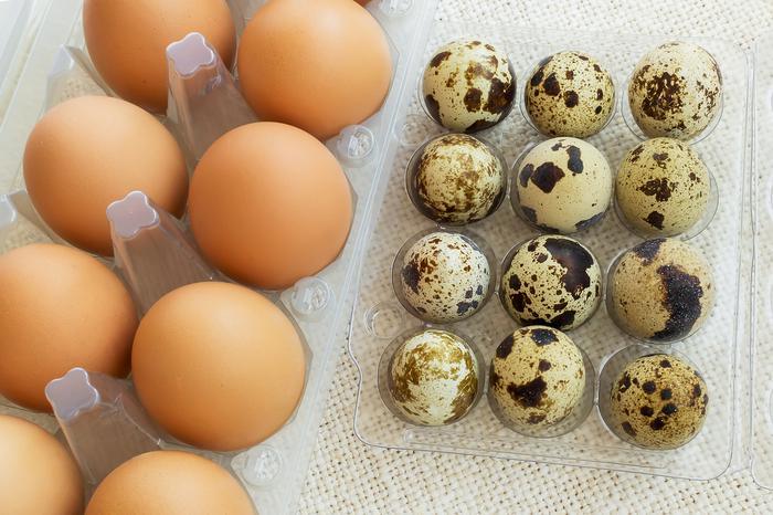 Bıldırcın yumurtasının faydaları neler? Bıldırcın yumurtasının...