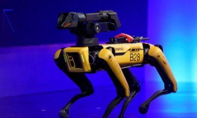 Hyundai, ABD'li robot şirketi Boston Dynamics'i satın alabilir