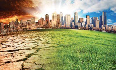 Bilim insanları: İklim değişikliği 2050 yılında ölümcül zirveye çıkacak