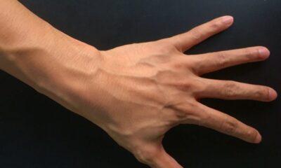Eldeki damarlardan kimlik belirleyen sistem