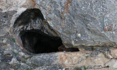 Çobanlar buldu, içine giren yöre halkı gözlerine inanamadı